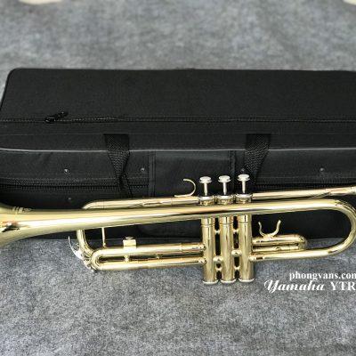 Kèn Trumpet Yamaha