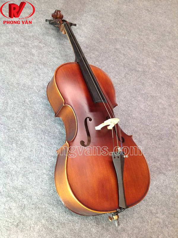 Giá cây đàn cello