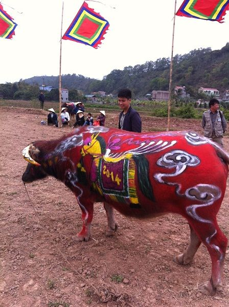 Lịch sử làng trống Đọi Tam