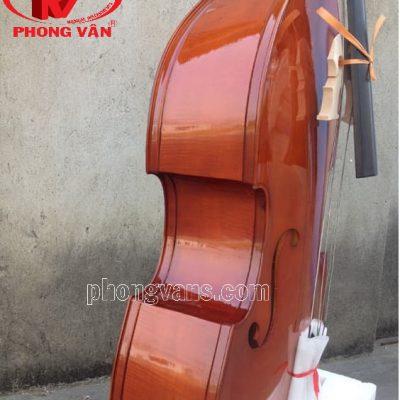 Kích thước đàn doublebass đại hồ cầm