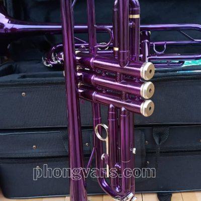 Kèn trumpet màu tím Victoria Usa VTR-568EX
