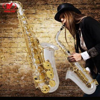 Kèn Alto saxophone Yanagisawa Japan A9933 bạc silver