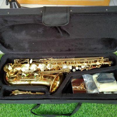 Kèn saxophone alto Victoria VAS-568EX màu vàng