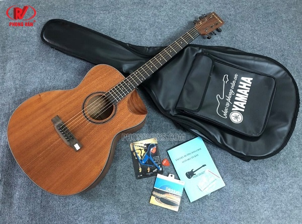 Đàn guitar acoustic G-Danube CDS09C