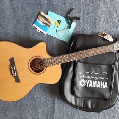 Đàn guitar tay trái hiệu Tagima gỗ mahogany