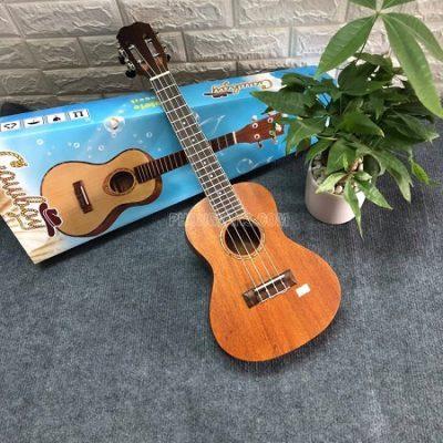 Đàn ukulele size 23 gỗ mahogany