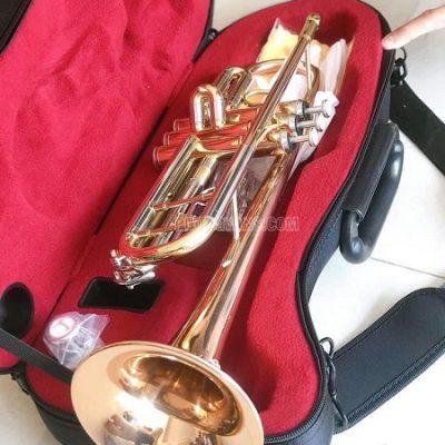 Bán sỉ kèn trumpet 3 màu hãng Selmer TR711
