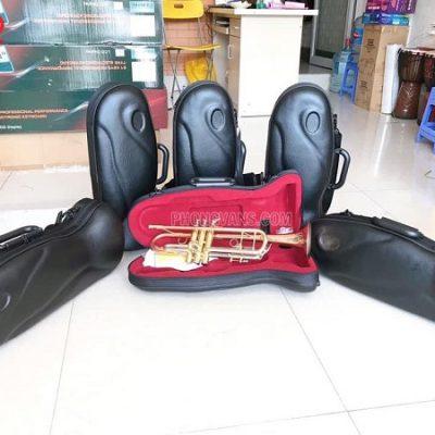 Bán sỉ kèn trumpet 3 màu hãng Selmer TR711data-cloudzoom =