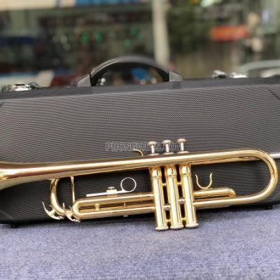 Bán sỉ lẻ kèn Trumpet hãng HTmusic màu vàng HTR-628data-cloudzoom =