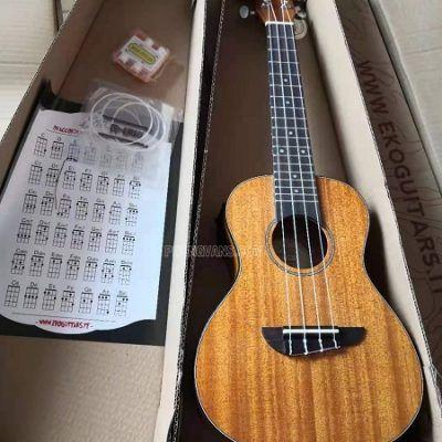 Sỉ lẻ đàn ukulele Eko EQ giá rẻ