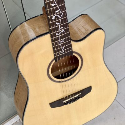 Đàn guitar acoustic Deviser L-810B-N